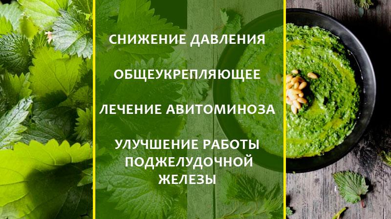 Свойства и применение крапивы