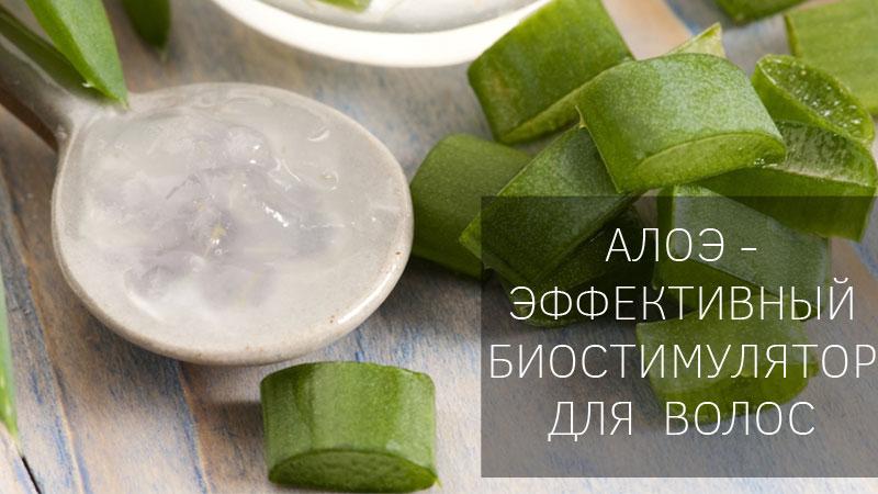Рецепты самых эффективных масок с алоэ для волос в домашних условиях