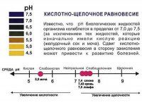 Нужен ли ПШ-метр. Уровень ПШ организма - показатель здоровья