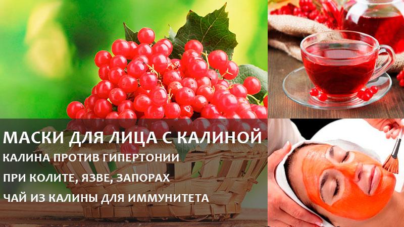 Калину широко применяют в кулинарии, косметологии и народной медицине