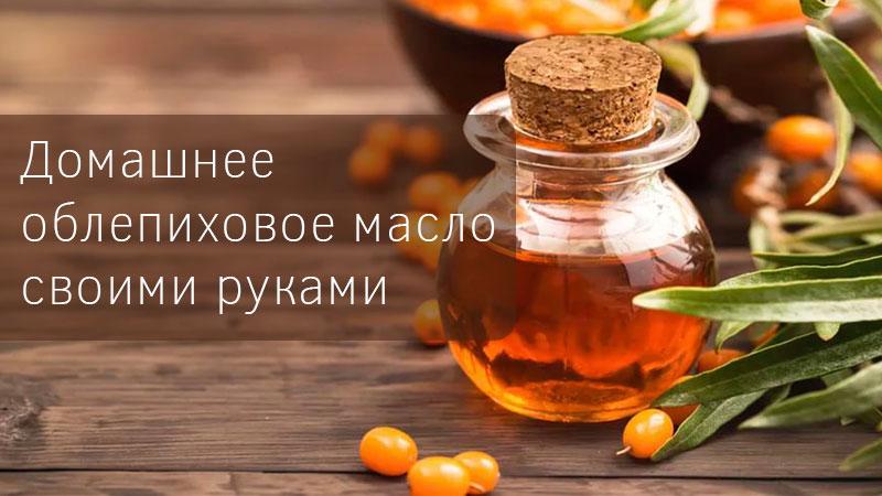 Получение облепихового масла в домашних условиях