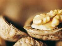 Грецкий орех. Масло грецкого ореха:свойства и применение