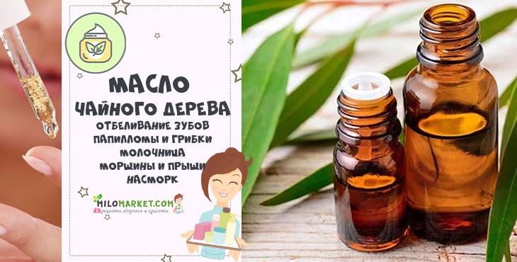 Масло чайного дерева — свойства и применение